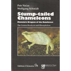 Stump-tailed Chameleons