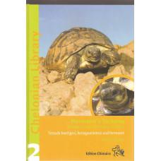 Hermann's Tortoise - 190 sidor