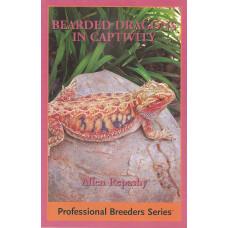 Bearded Dragons in Captivity
