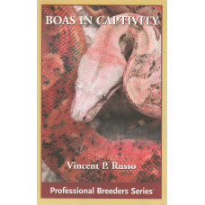 Boas in Captivity
